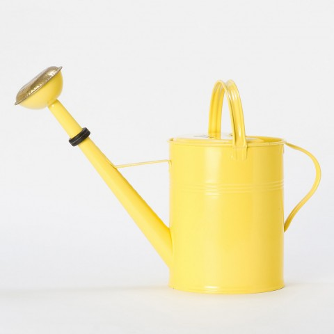 Sunny Side Watering Can at Terrain