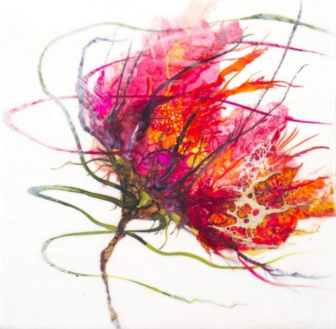 Floral Study IV by Alicia Tormey