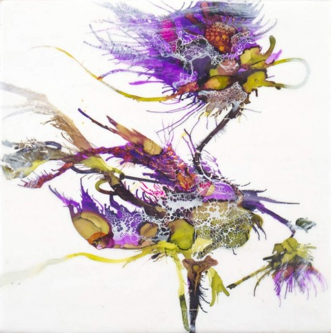 Floral Study III by Alicia Tormey