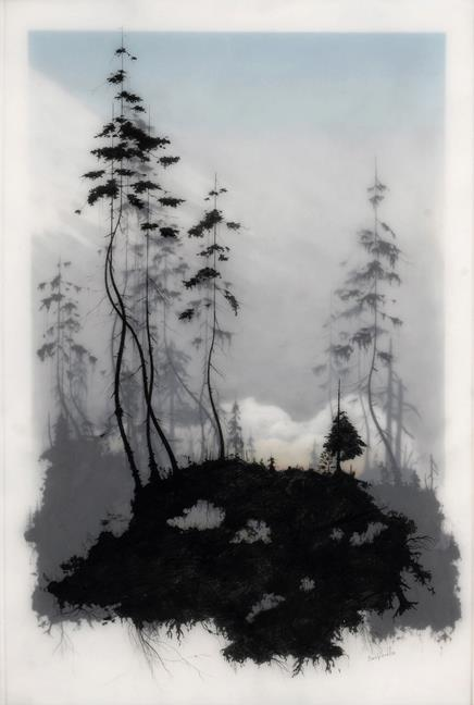 Untitled #1 by Brooks Salzwedel