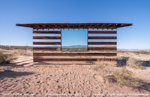 Lucid Stead by Phillip K. Smith III