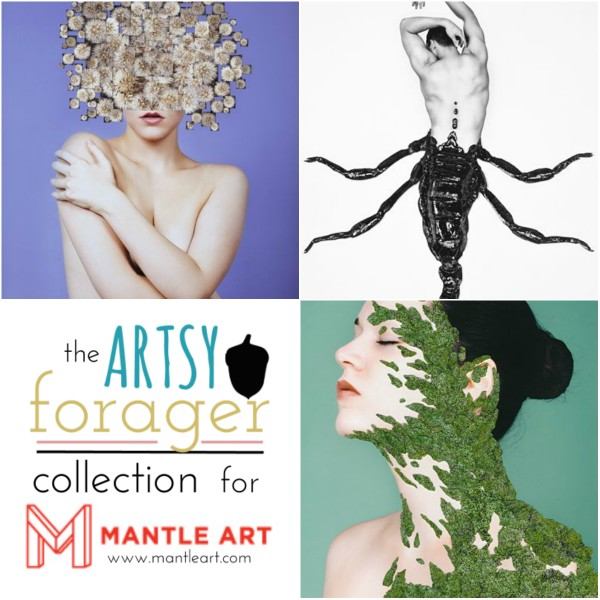 Alexandra Bellissimo, The Artsy Forager Collection for Mantle Art #art #artists #photography #collage #affordableart #prints