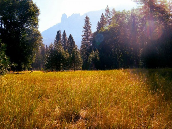 This Artsy Life: Finding Ourselves in Yosemite #travel #outdoors #yosemitenationalpark