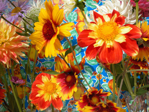 Kristi Hager | artsy forager #art #artists #flowers #photography