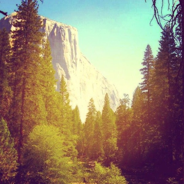 Finding LATITUDE. Yosemite. | artsy forager #yosemite #findinglatitude #travel #california
